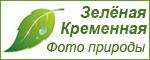 Зеленая Кременная. Фотографии природы