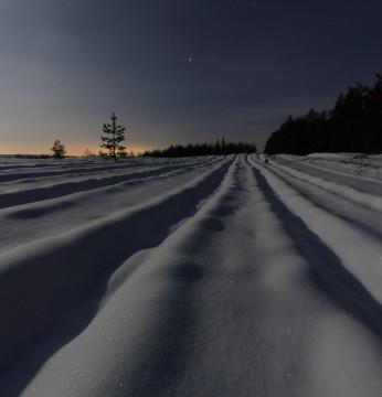 В белых песках